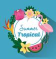 summer tropical beautiful flamengo exotic plants vector image