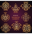 Golden decorative elements vector image vector image