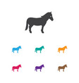 of animal symbol on horse icon vector image