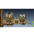 family owls vector image vector image