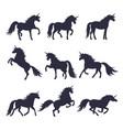 mythology set of unicorns silhouette vector image