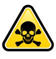 Skull danger signs vector image