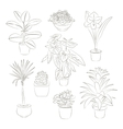 House plants set vector image