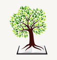 Education concept tree book vector image