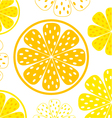 lemon yellow slices vector image vector image