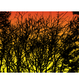 trees at sunset vector image vector image