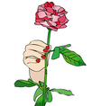 Receive a rose vector image