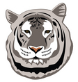white tiger vector image