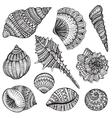 Set of hand drawn ornate seashells vector image