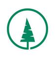 tree logo and abstract organic tree logo vector image