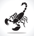 scorpion 2 vector image