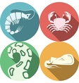 Seafood round colored icons vector image