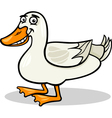 duck farm bird animal cartoon vector image vector image