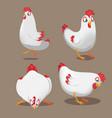 chicken animal cartoon pose set vector image
