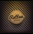 Rattan Background vector image