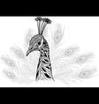 Peacock bird head as symbol for mascot or emblem vector image