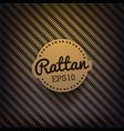Rattan Background vector image