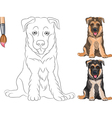 Coloring Book of funny smiling Puppy Shepherd vector image vector image