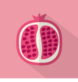 Pomegranate Part Flat Design vector image