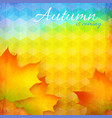 Abstract autumn bright background vector image