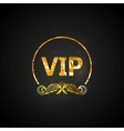 golden VIP card black ornate background with vector image