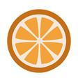 fresh ripe slice of orange healthy food vector image