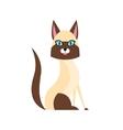 Siamese Cat Breed Primitive Cartoon vector image