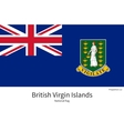 National flag of British Virgin Islands with vector image
