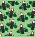 tropical exotic bird toucan on branch seamless vector image