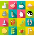 Spa icons set flat style vector image