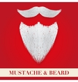 Realistic Christmas Santa white beard with curly vector image