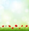 Poppy Field vector image