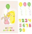 Baby Bunny Birthday Card vector image