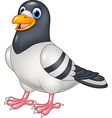 Carton funny pigeon isolated on white background vector image