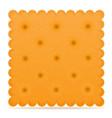 biscuit 04 vector image vector image