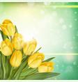 Bouquet of tulips EPS 10 vector image