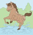 Jumping in Puddles vector image
