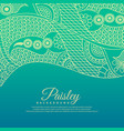 beautiful paisel design background vector image