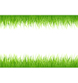 Grass On White Background vector image vector image