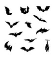 isolated silhouettes of bats vector image