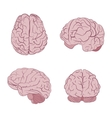 Human brain four views Top frontal side three vector image