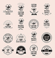 Cotton badges design organic product vector image vector image