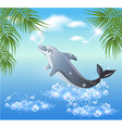 dolphins leaps vector image vector image