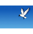 seagull on the blue vector image