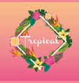tropical flowers leaves exotic flora wild nature vector image