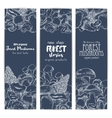 Forest mushrooms sketch banners vector image