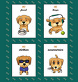 pet shop labels vector image
