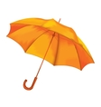 Umbrella on a white background vector image