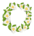 Round Frame Made in Chamomile Flowers vector image