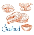 Salmon steaks sushi caviar Seafood sketches vector image